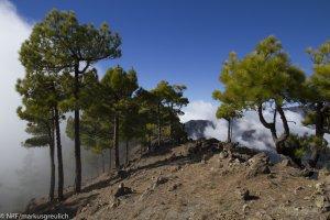 La Palma: Wandern, Klettern, Wellness